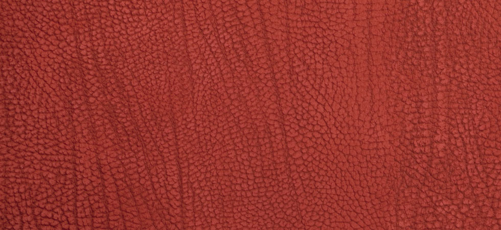 Contemporary Leather Tamarillo
