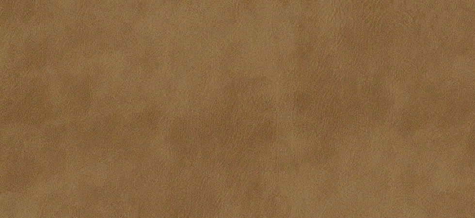 Distressed Leather Clay