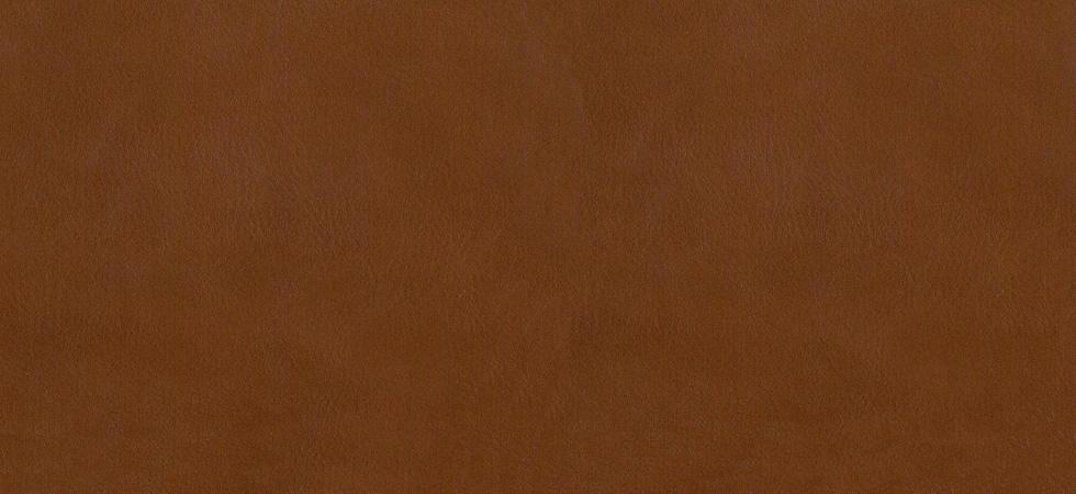 Distressed Leather Tan