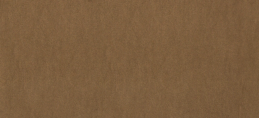 Metallic Leather Sahara