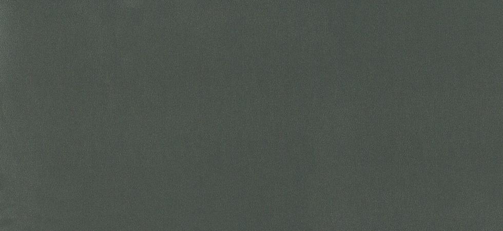 Metallic Leather Steel