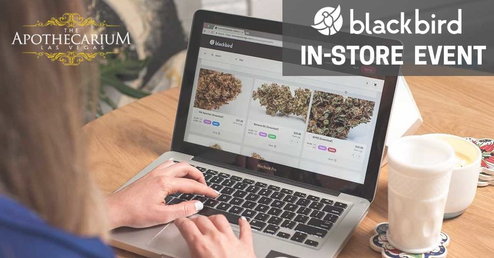 the apothecarium las vegas a medical and recreational cannabis dispensary discusses their in store event with blackbird go a delivery and ordering service