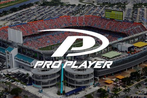 Pro Player Case Study.jpeg