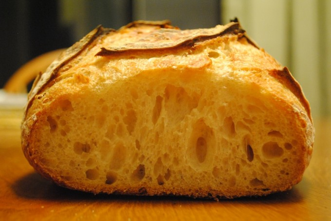 San Francisco Sourdough Crumb