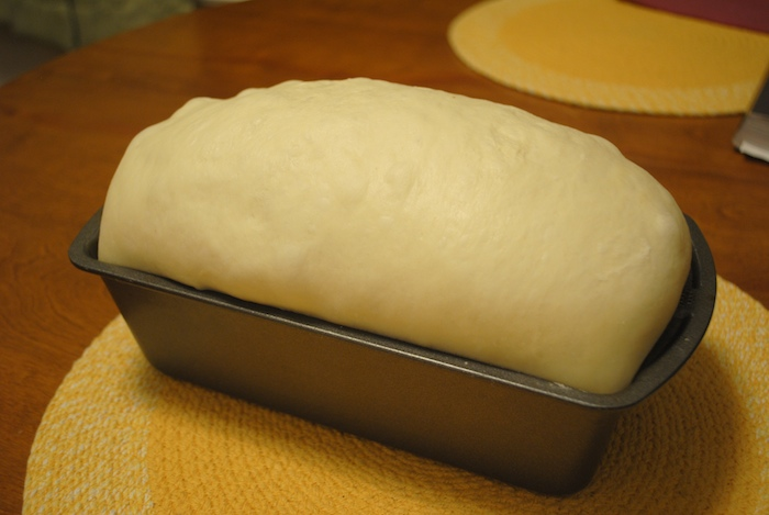 Proof Bread Baking & HOW TO SHAPE PROOF SCORE U0026 BAKE
