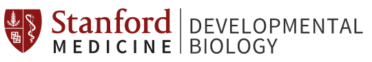 Stanford Developmental Biology