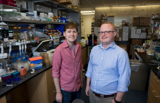 James Byers and Daniel Jarosz were part of a team that investigated how commonly traits in yeast are passed down by way of prion proteins instead of DNA. Norbert von der Groeben