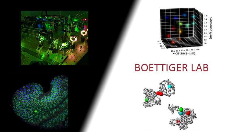 Boettiger Lab