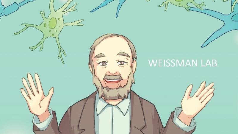 Weissman Lab
