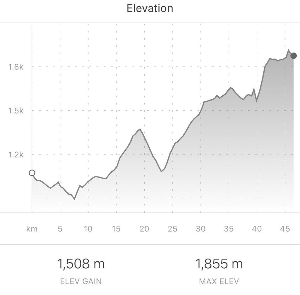Today's climb. From Strava.