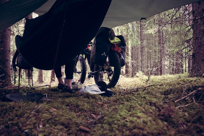 Skogsidyll i leiren mens vi venter på regnet.