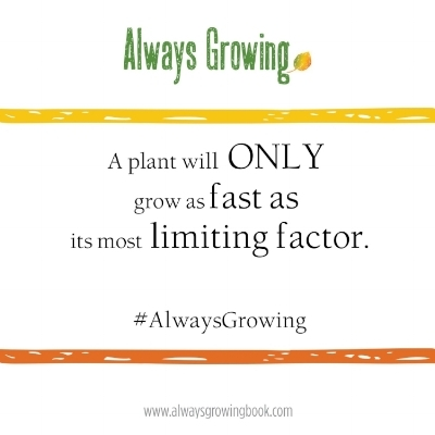 A Plant will Only Grow as Fast.jpg