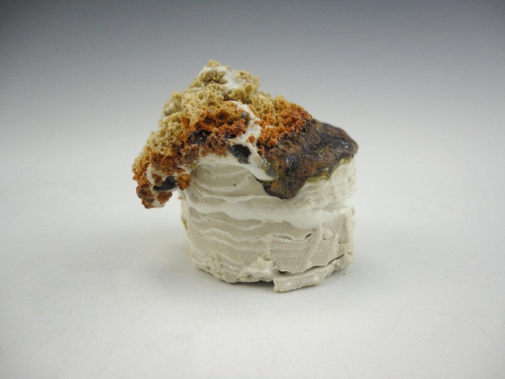 Sediment Mini Cake