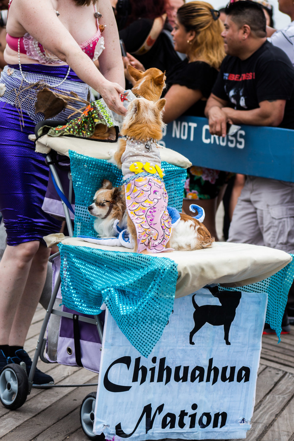 MermaidParade-113.jpg