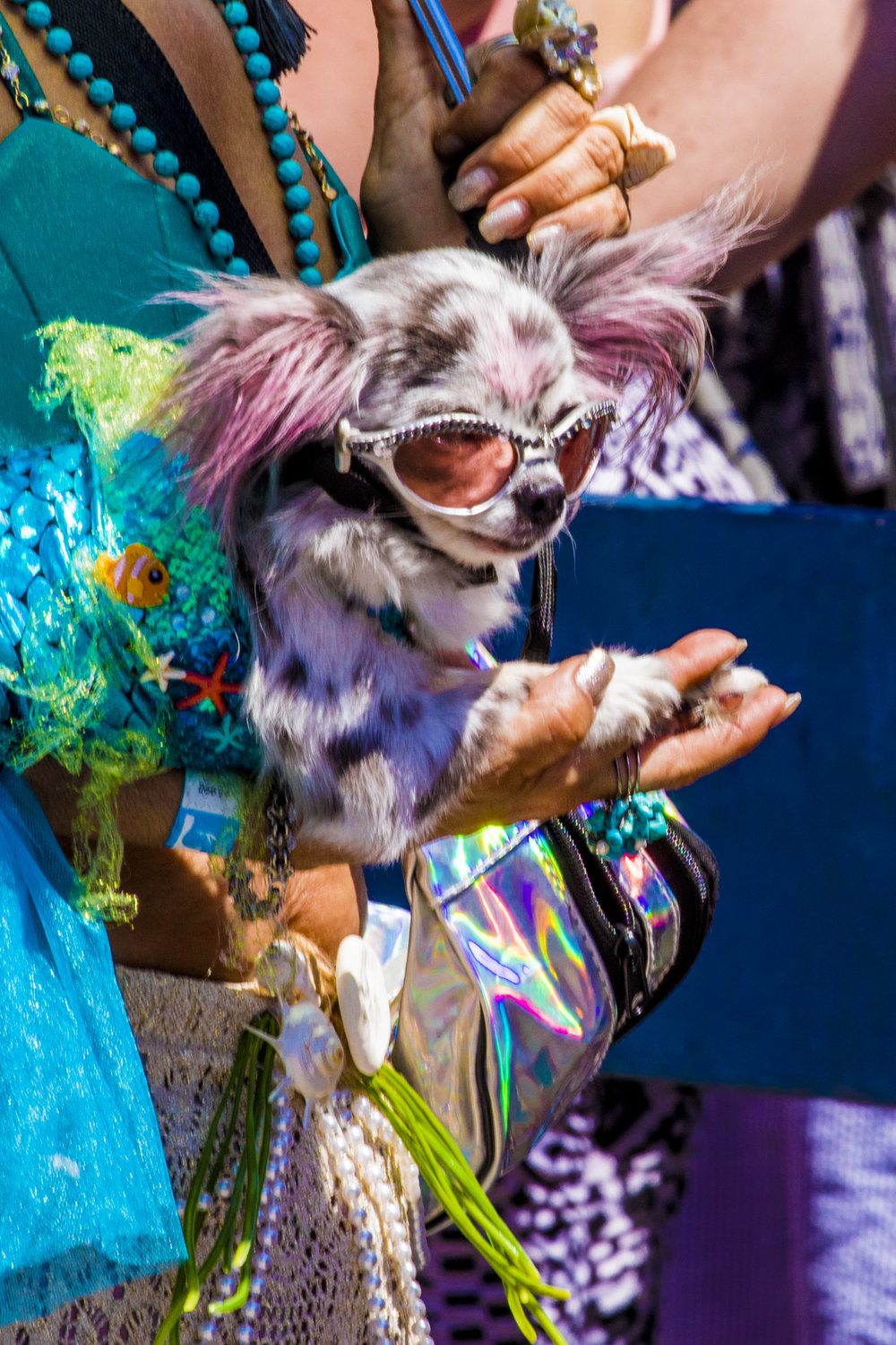 MermaidParade2018-72.jpg