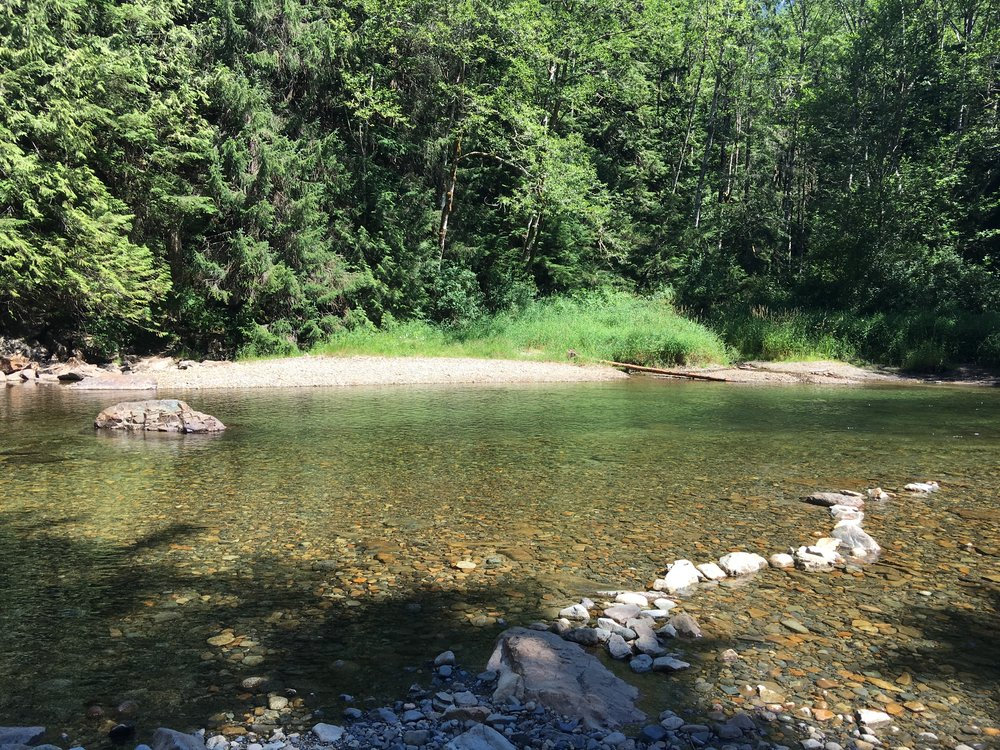 Wind River:   The filming location for Wind River, where the body of Teresa Banks is seen floating along the shoreline.