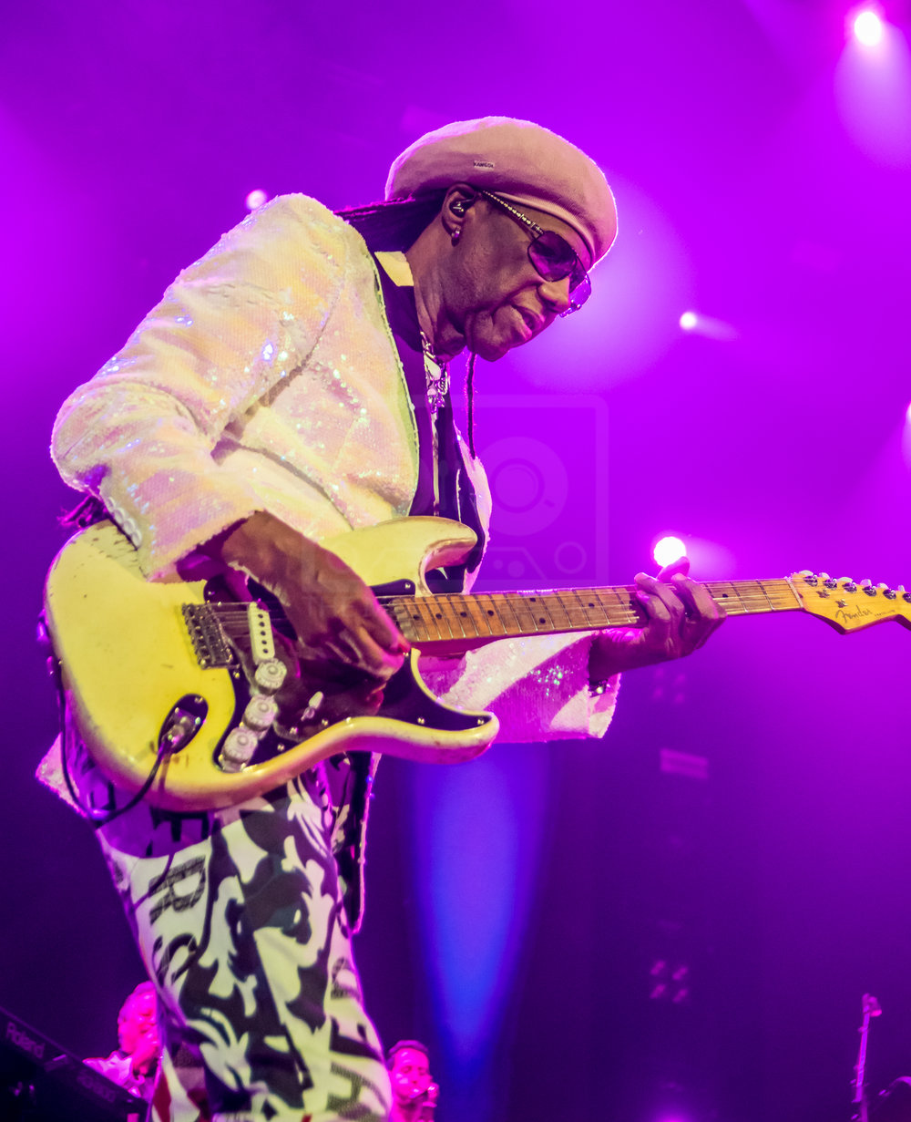 Nile Rodgers Hydro 13th Nov 2018-1.jpg