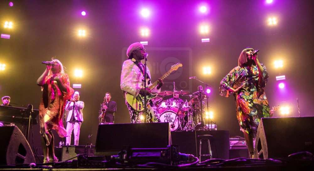 Nile Rodgers Hydro 13th Nov 2018-3.jpg