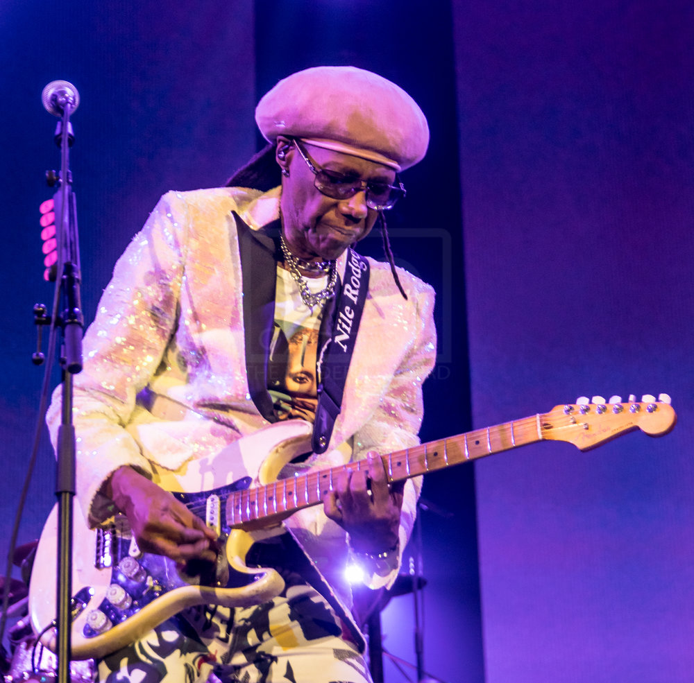 Nile Rodgers Hydro 13th Nov 2018-8.jpg