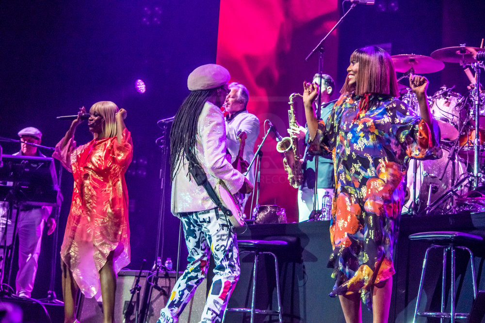 Nile Rodgers Hydro 13th Nov 2018-16.jpg