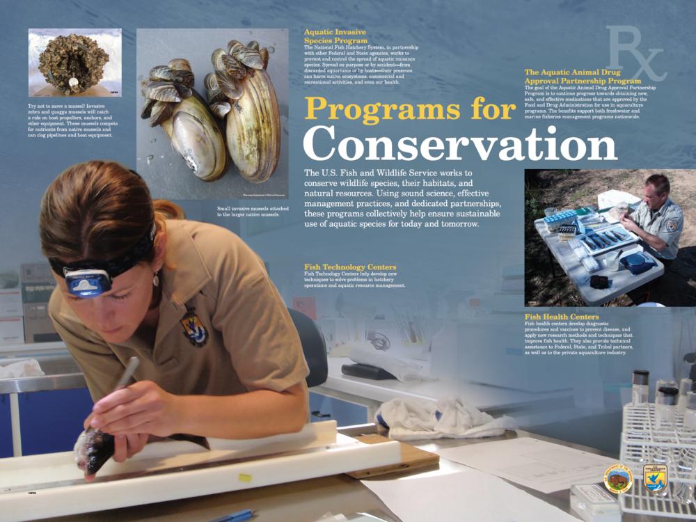 Programs for Conservation (Blue)