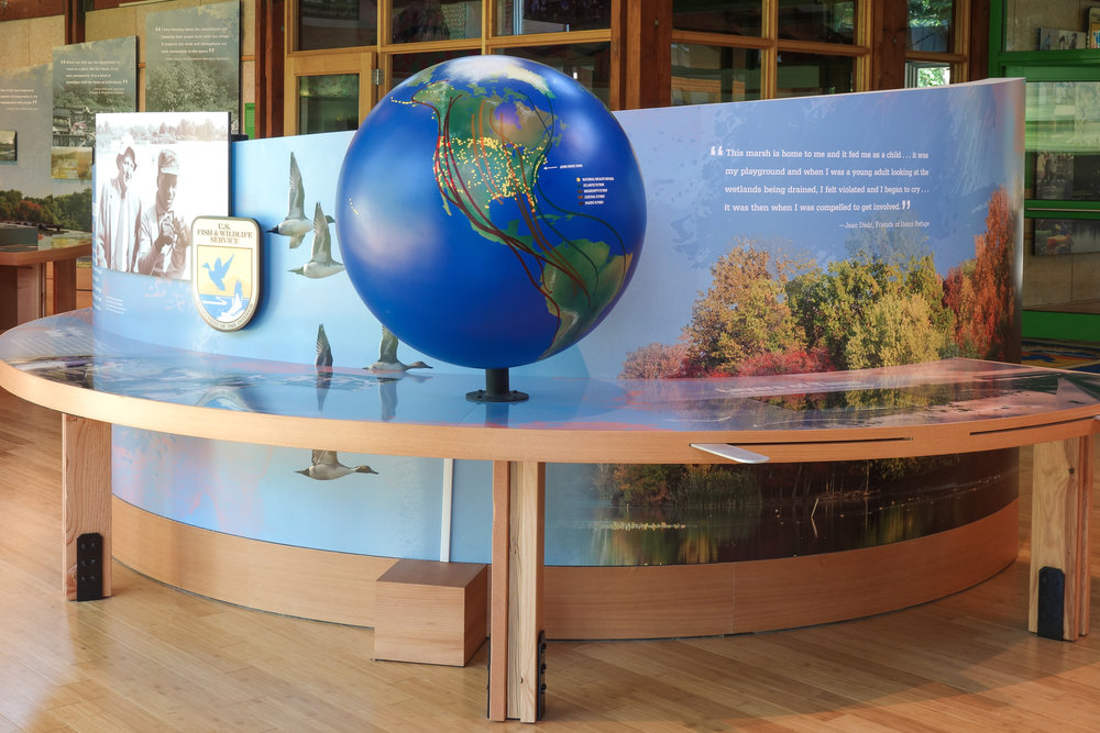 Visitors learn about the history of John Heinz National Wildlife Refuge and its significance to the global bird migration patterns.