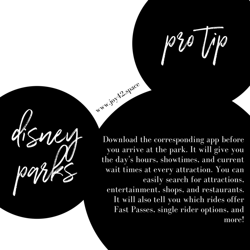 Disney Tips 1.png