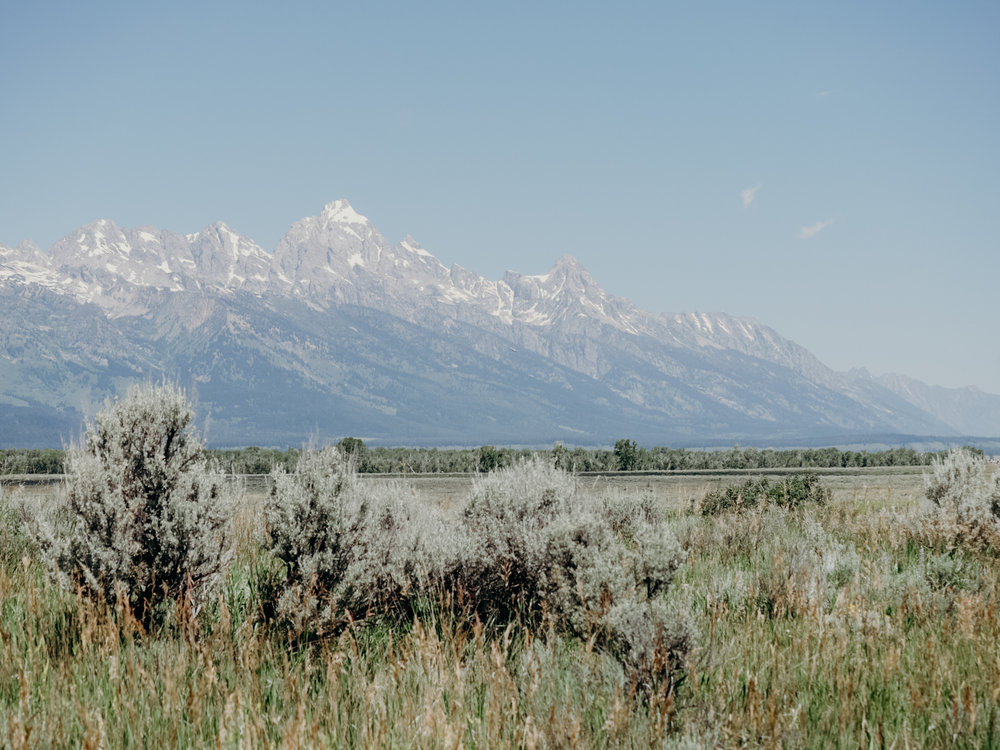 Visit Jackson Hole & The Grand Tetons