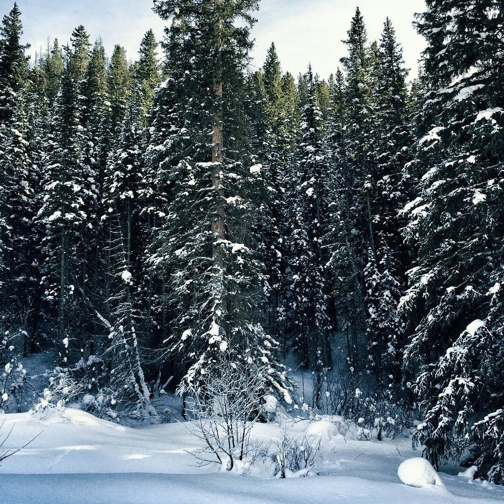 Christmas Bucket List - Cross Country Skiing Devil's Thumb