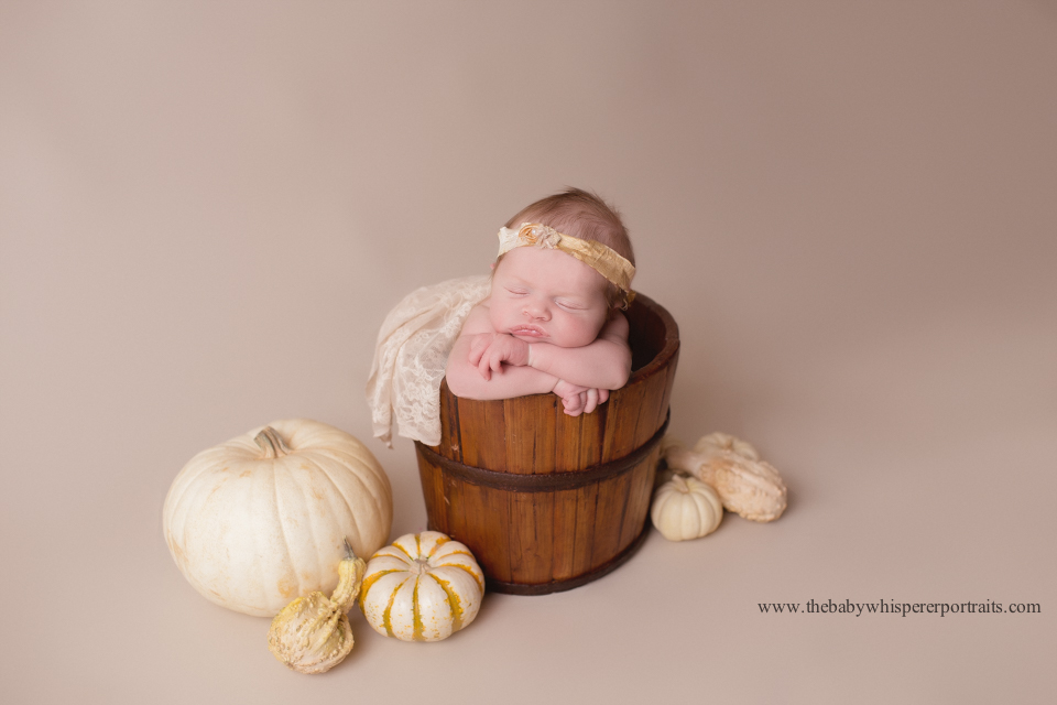 newborn photographer phoenix