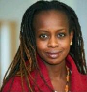 Image: https://www.ccny.cuny.edu/profiles/adeyinka-akinsulure-smith