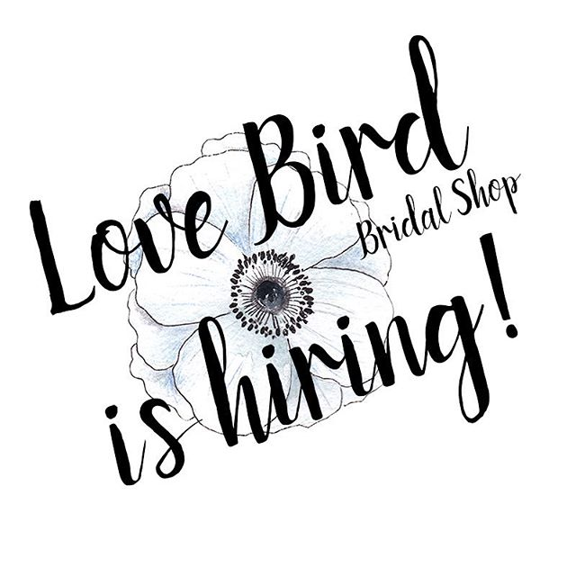 We are looking for a magical, talented human to join our team part time! This bridal stylist position is for 2-3 days a week...weekend availability is a must. Retail experience is a plus, but we are absolutely open to training the right person! If you have a love of people and fashion, and are a social media maven, please get in touch. We'll bring the coffee, you bring the awesome. Must email cover letter and resume to LoveBirdBridalShop@gmail.com. ❤️. Friends: please tag anyone you know who would love working with our awesome brides! xoxo. . . . . #hiring #parttime #mysticct #ctbride #mysticbride #newportbride #ribride #bridalfitting #ido #sayyes #engaged #engagement #sayyestothedress #nebrideinsta #shoplocal #bridalaccessories #weddinggown #junebugweddings #photobugcommunity #heyheyhellomay #wedphotoinspiration #thatsdarling #theknot #radlovestories #huffpostweddings #loverly #indiebride #rusticweddings