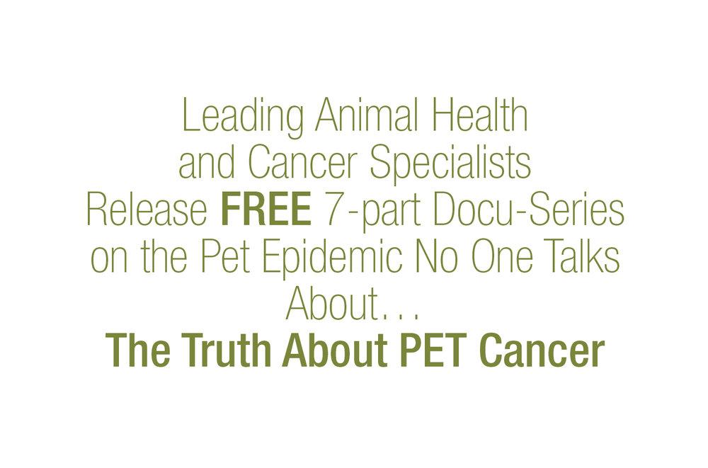 pet cancer.jpg