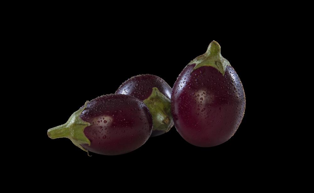 Indian_Eggplant