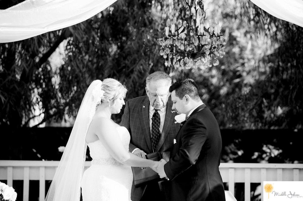 036wilsoncreekwineryweddingpictures.jpg