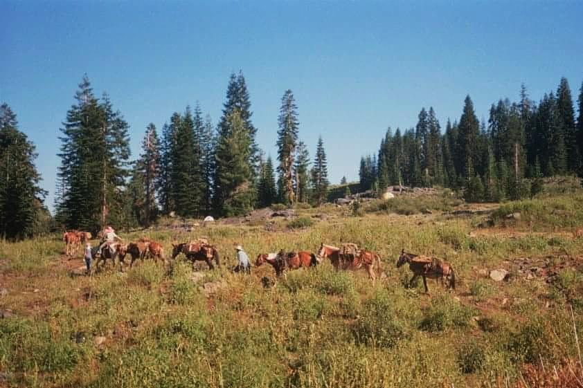 Pony Express. Klamath 2012, 35mm.