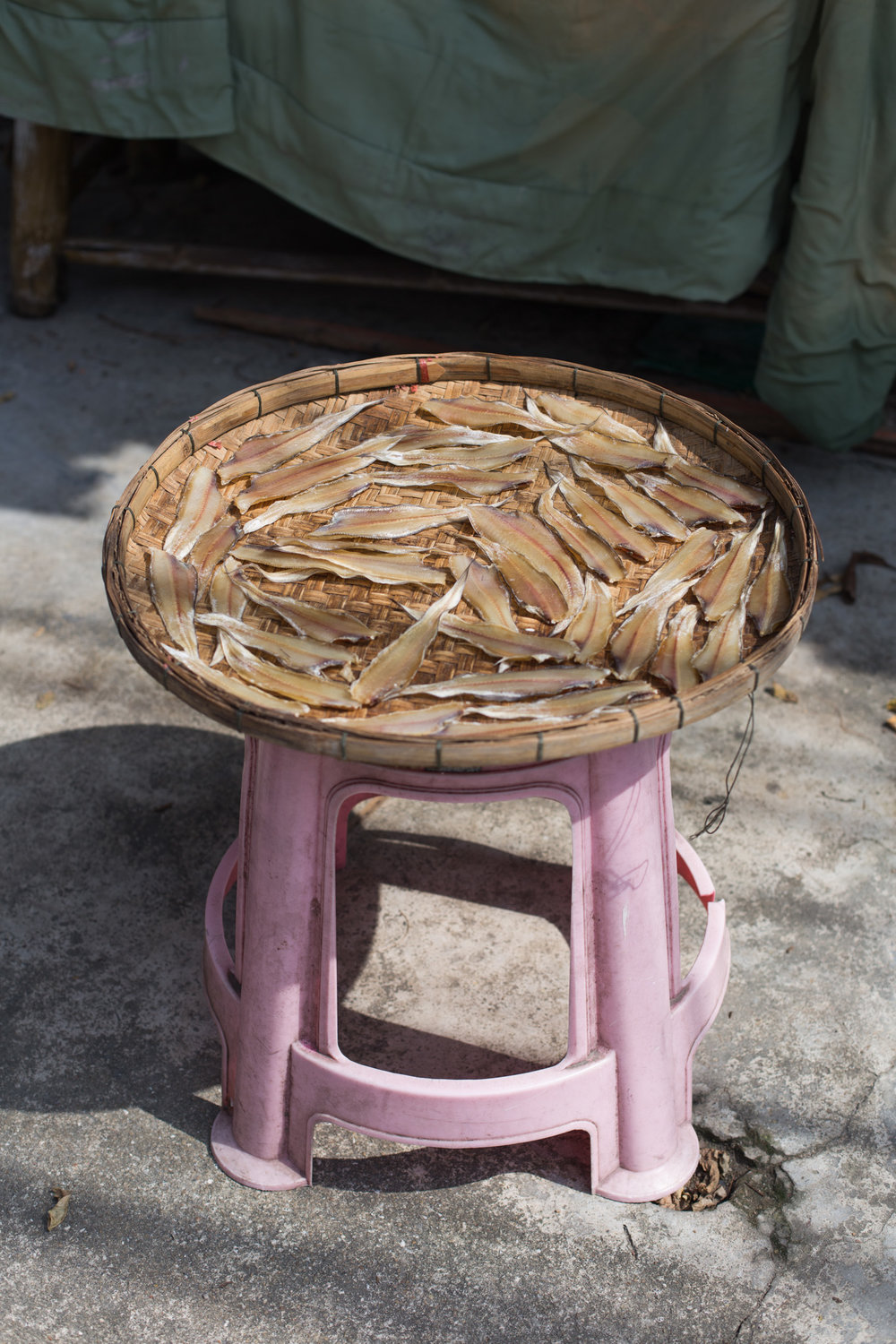 Drying Fish in the Sunlight