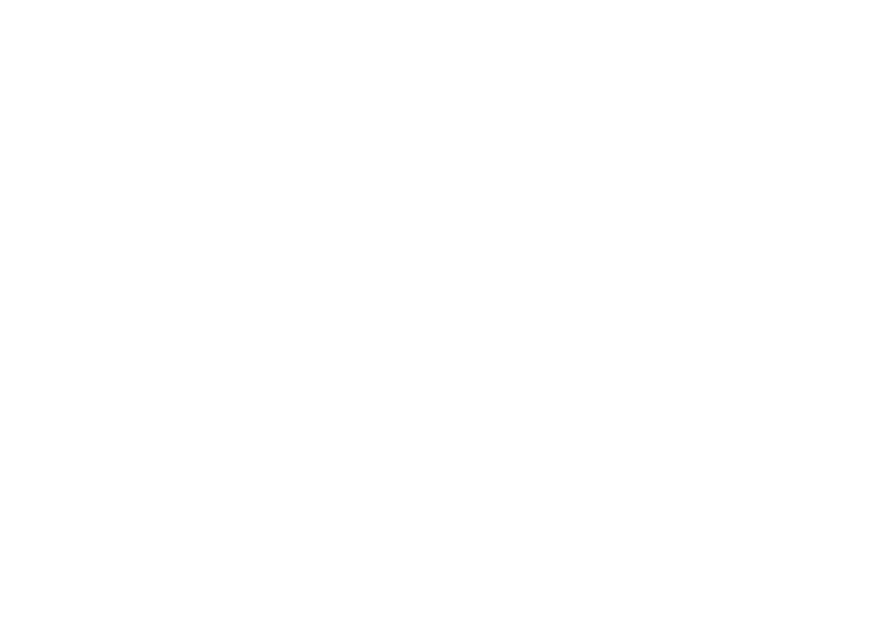 Torch Logo_White-01.png