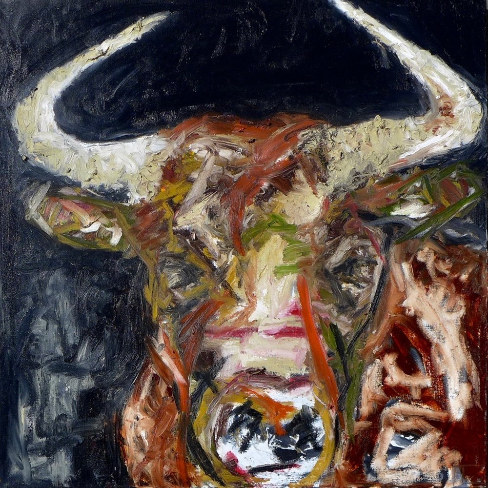 XANDER THE BULL- SOLD