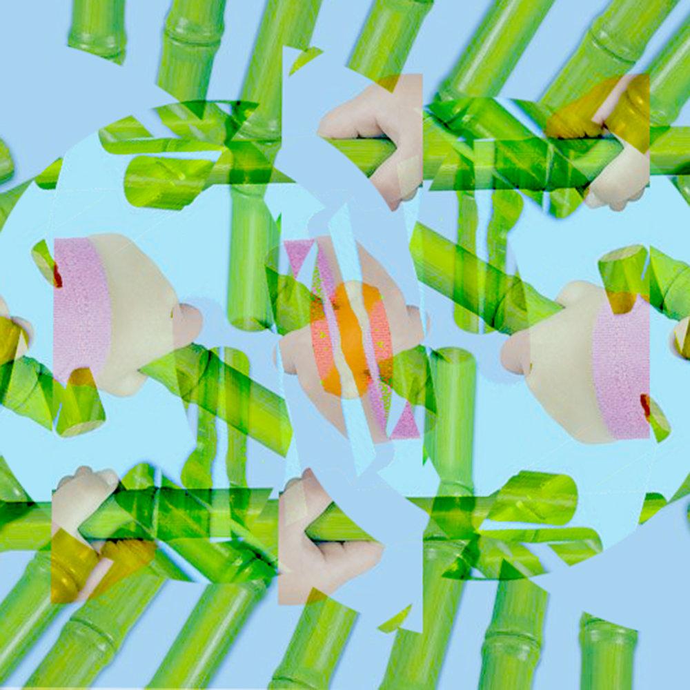 fractal bamboo.jpg