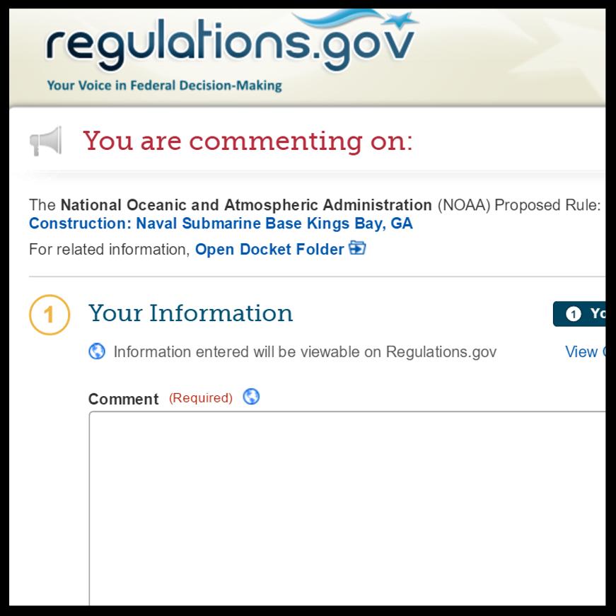 reg_dot_gov.png