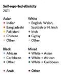 01 Ethnicity table