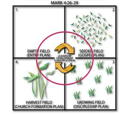 Four Fields  leadership