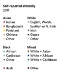 01 Ethnicity table