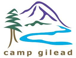 camp g logo.png