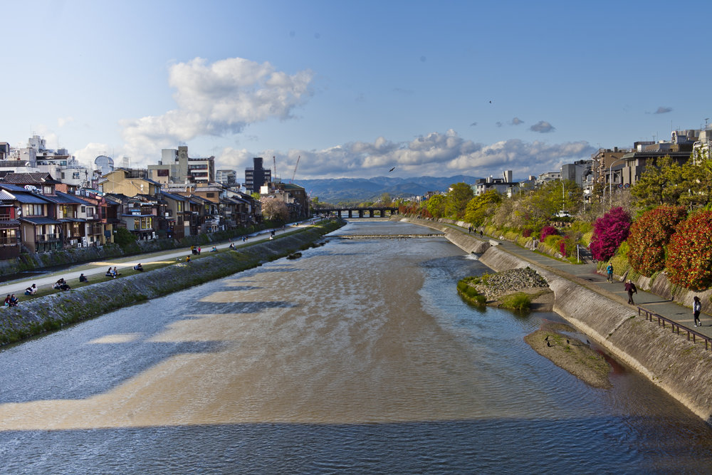 kyoto kamogawa.jpg