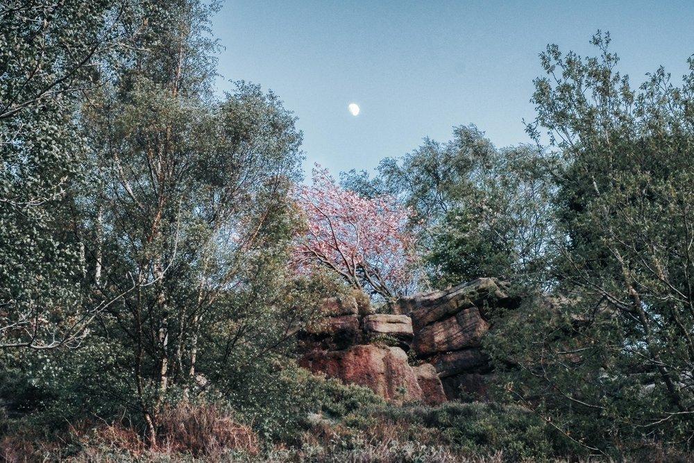 Moon above Fox Hagg
