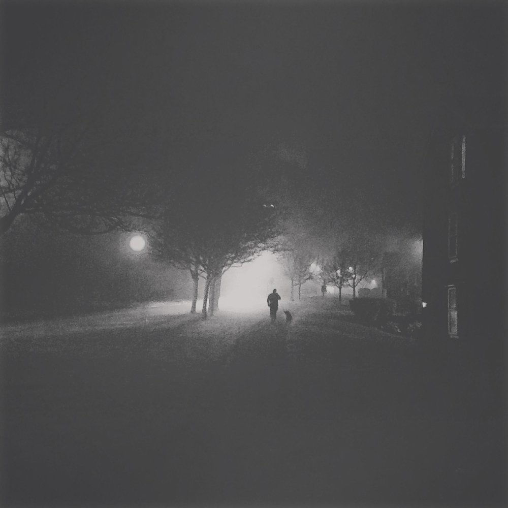 A man decides to take his dog for a walk in the fog