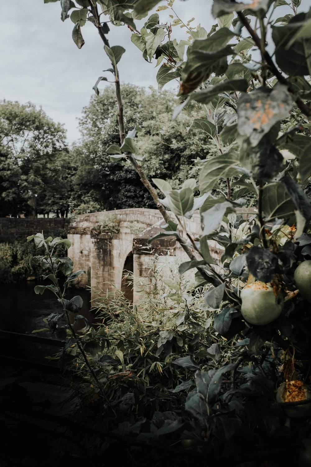 Darley Bridge & Apples