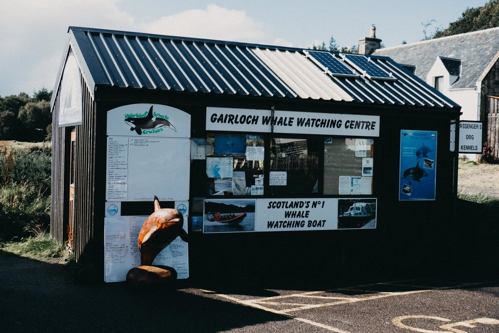 Hebridean Whale Cruise Office at Gairloch